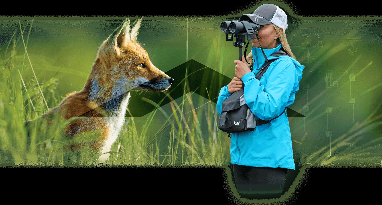 Homepage slide for Hawkin Birding - Billings, Montana